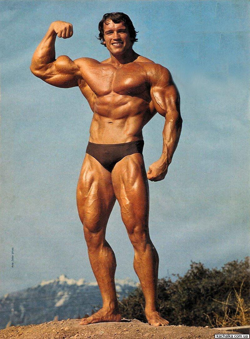 Арнольд Шварцнегер: могуч и неволосат
