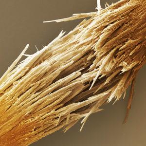 Макрофотография поврежденного волоса